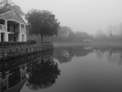 Dew Drop Fog