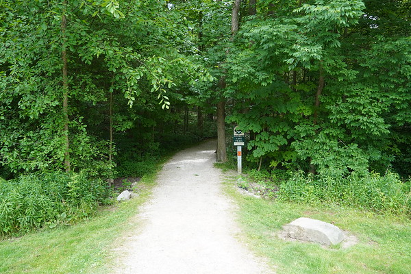 Ansel Cave Trail
