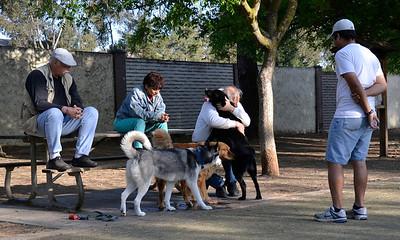 Saratoga Creek Dog Park