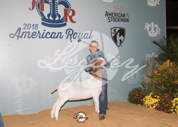 Jr. Market Goats