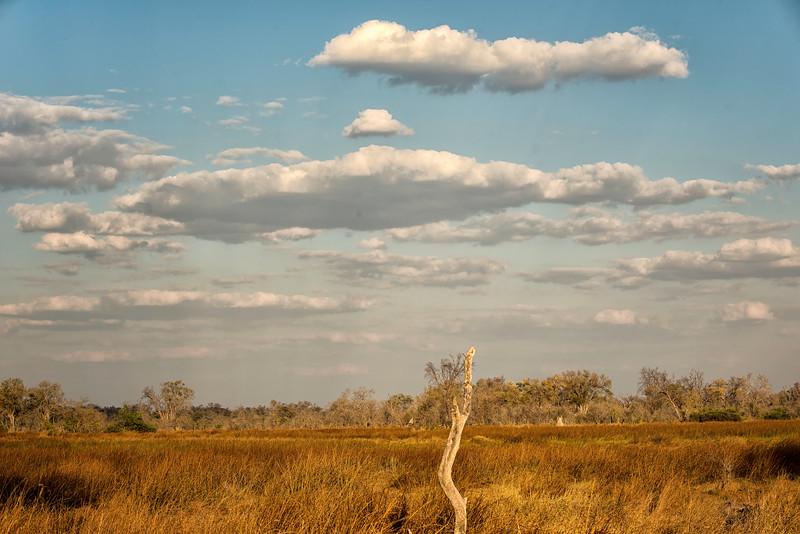 2014-08Aug-Okavango Masters-83-Edit.jpg