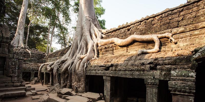 Cambodia-317.jpg