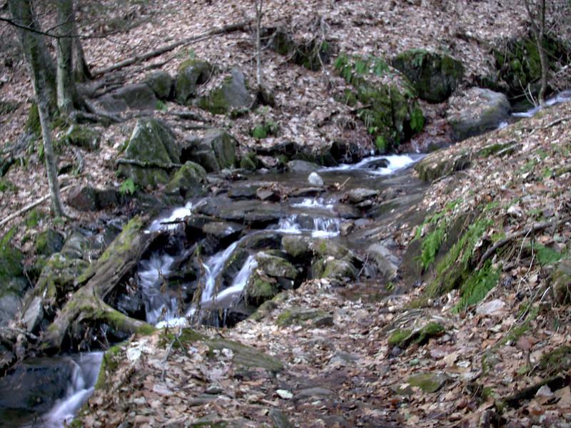 Art Loeb Trail - 3,920'