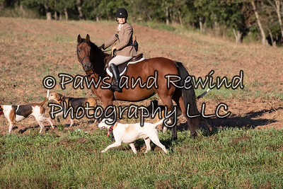 September 20 Amwell Valley Hounds Newcomers & Supporters Day