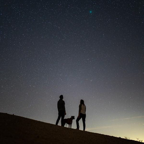 comet 46p square.jpg