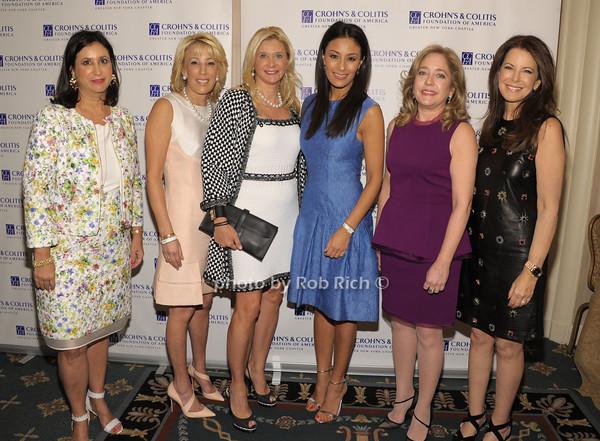 Elyse Newhouse, Michele Sweetwood, Michelle Swarzman, Liz Cho, Dr.Robbyn Sockolow, Ellen Crown