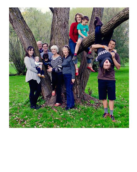 family tree 8x10.jpg