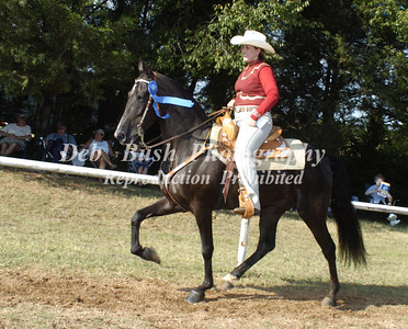 CLASS 6  LITE SHOD WESTERN SPECIALTY
