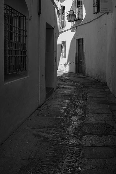 Andalucia-191118-312.jpg