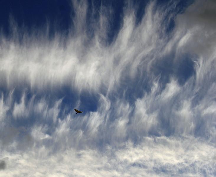 cloud 17.jpg