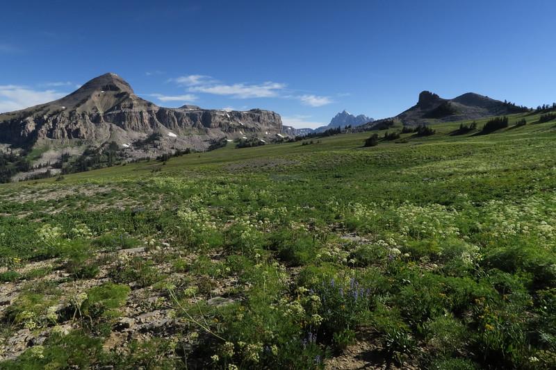 Headed toward Fox Creek Pass and Fossil Mountain