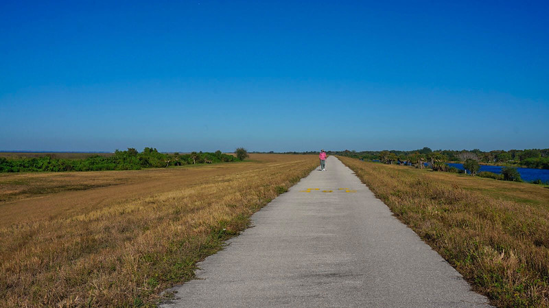 Florida Trail Henry Creek