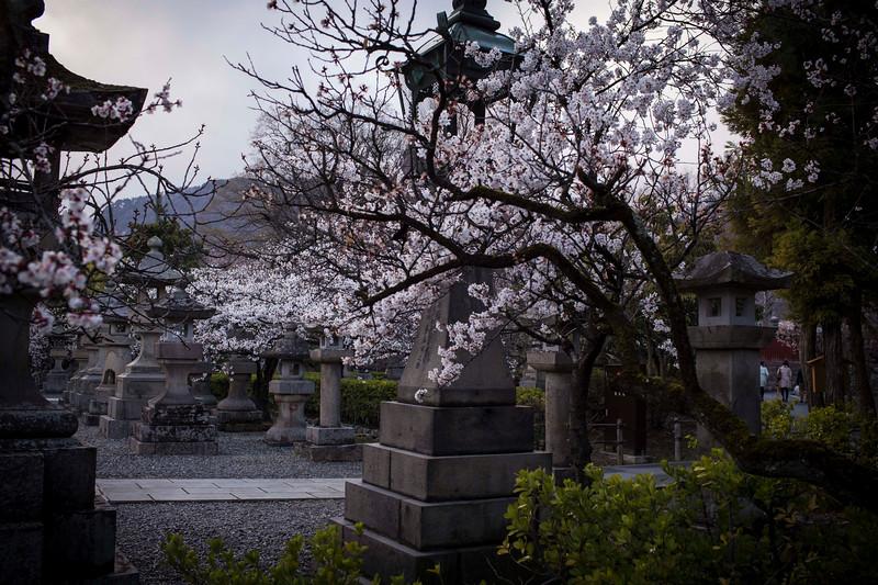 Nagano  12042013 011.jpg