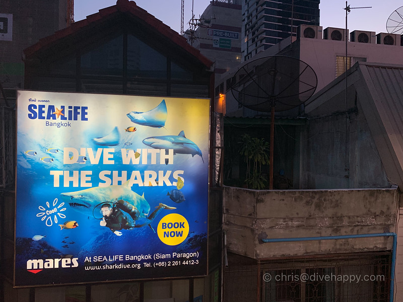 dive-with-the-sharks-bangkok-vee-shops.jpg