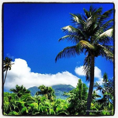 Nevis October 2013