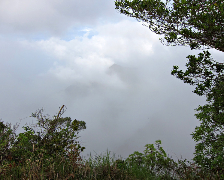 Kauai'10_S90_153.jpg
