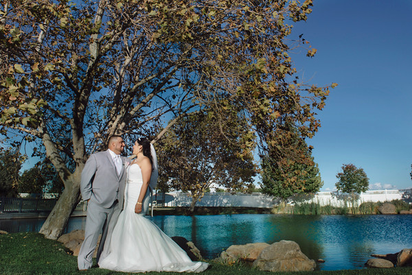 Steven & Marcella Wedding online gallery