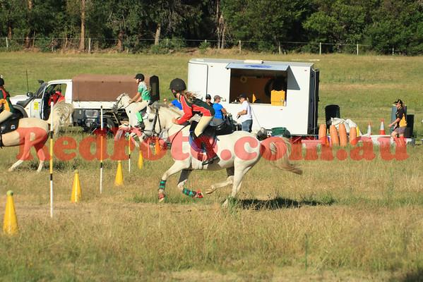2014 01 19 MGA Training Day Wanneroo Pony Club