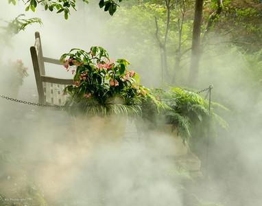 061012 Arboretum