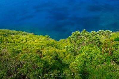 Azores | Açores