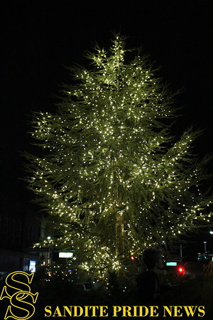 11/28/2017 Inaugural Christmas Tree Lighting Ceremony