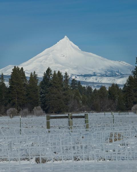 Mt Jefferson-KTK121610_DSC7212.jpg