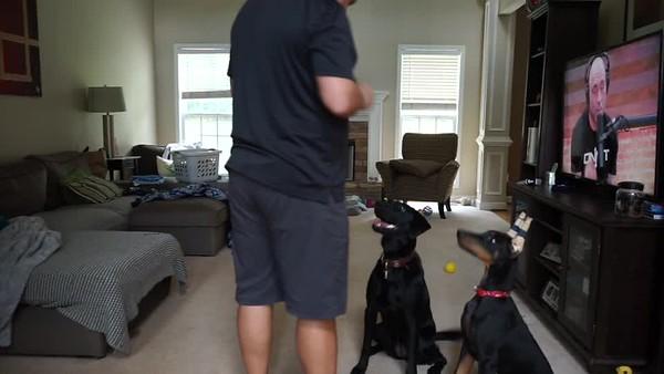 Layla Training Video 7/18