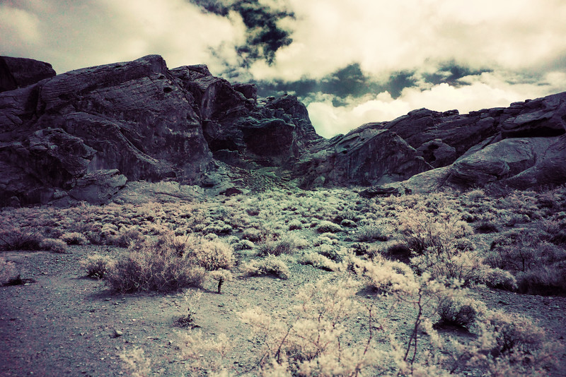 Nevada Las Vegas Red Rock Canyon0005.jpg
