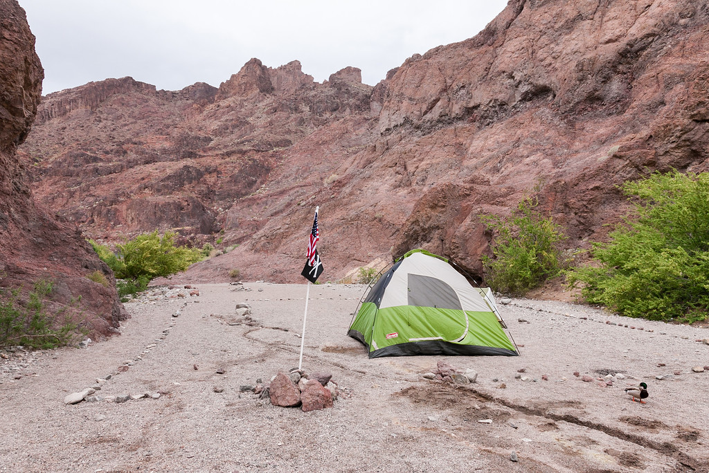 Tent camping at Arizona hot spring black canyon