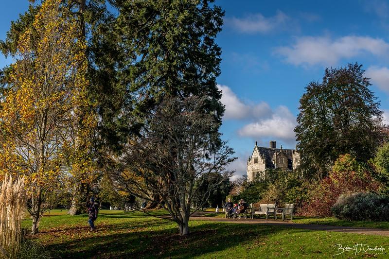 Wakehurst_Autumn-6074.jpg