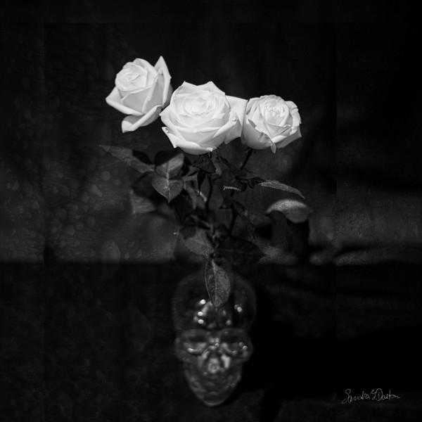 Roses and Skull Vase