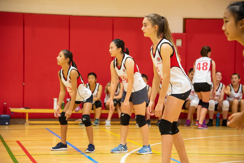 MS Girls Volleyball-Athletics-YIS_7636-2018-19.jpg