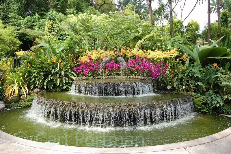 National Orchid Gardens (4).jpg