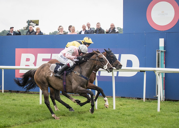 Uttoxeter Racecourse - Tue 11 July 2017