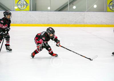 Team Alberta Black VS PHD Predators