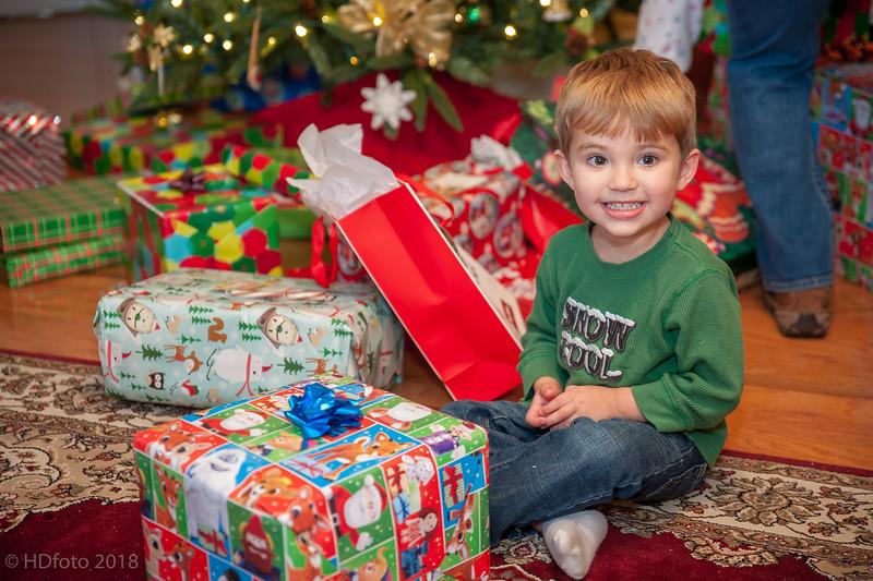 DeLaune Christmas ,December 22, 2018,-2.jpg