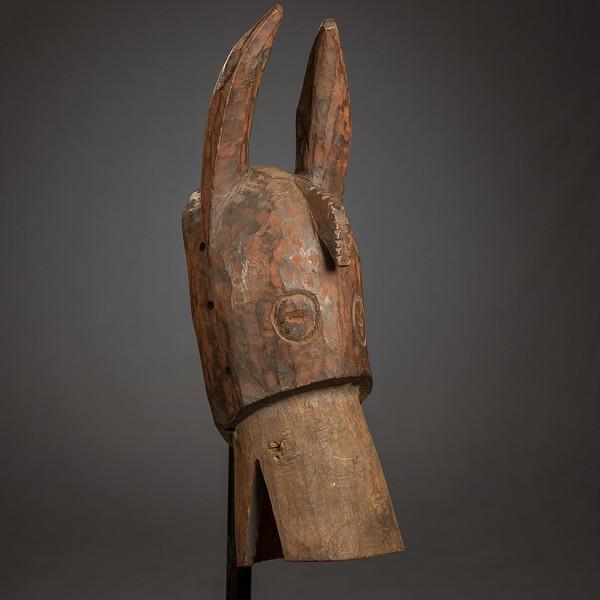 #12 Horse Big Ears-102009.jpg