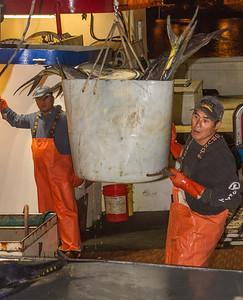Bringing Fish to Market