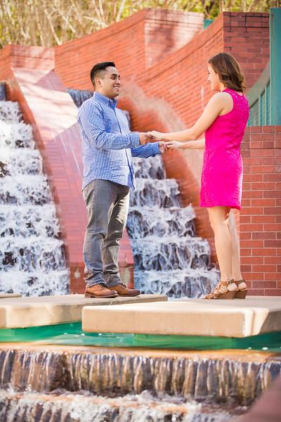 Brenda & Eric's Engagement