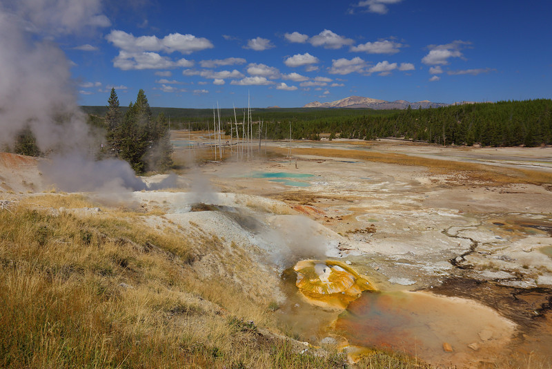 Yellowstone 075.JPG
