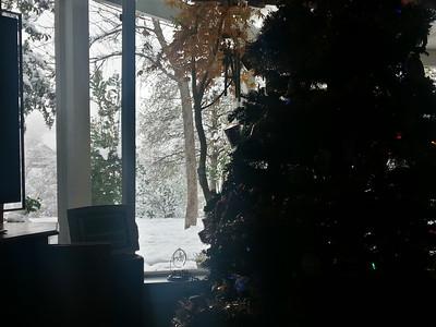 """5"""" of Snow in Redding"""