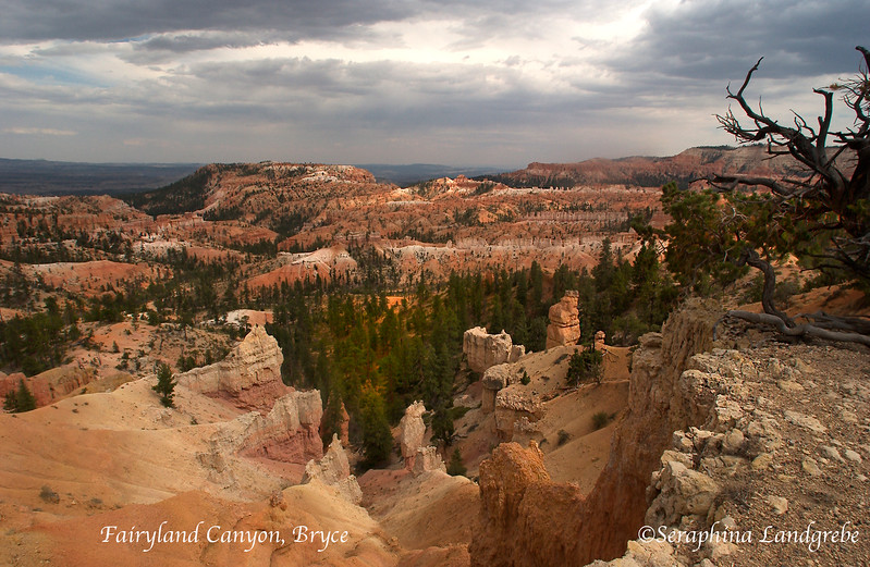 DSC_5253 Fairyland canyon.jpg
