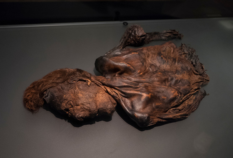 "One of the ""bog people,"" mummified in peat bogs, lived 15 centuries ago."