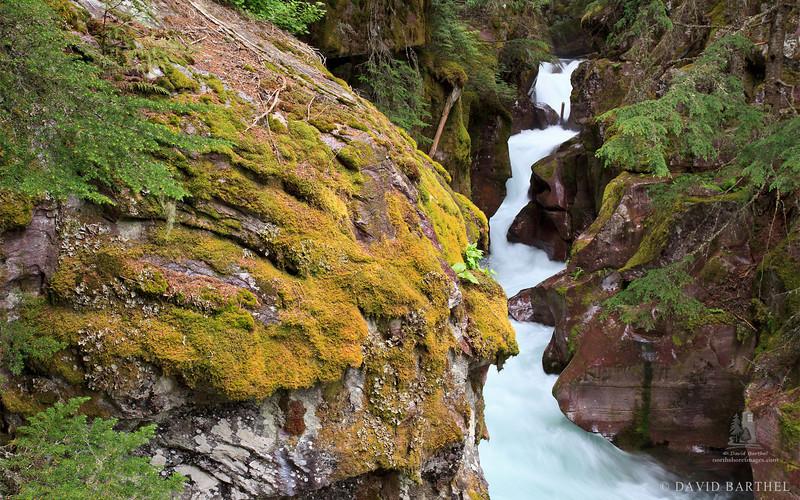 avalanche_gorge1.jpg