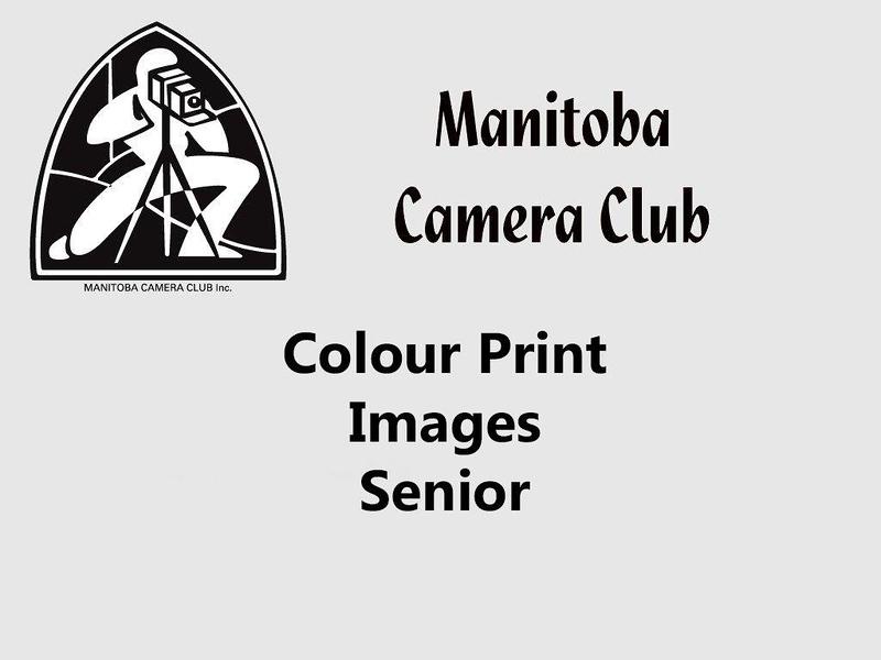 400-Colour Print Senior.jpg