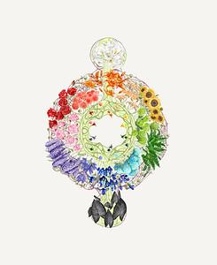 Flower Super Nova