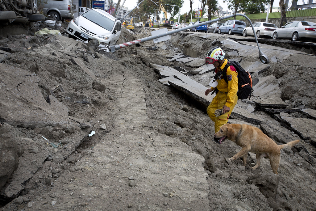 . A rescue worker and his dog search through the site on the damaged road after several gas explosions in southern Kaohsiung on August 1, 2014 in Kaohsiung, Taiwan. A series of powerful gas blasts killed 25 people and injured up to 267 in the southern Taiwanese city of Kaohsiung, overturning cars and ripping up roads, officials said.  (Photo by Ashley Pon/Getty Images)