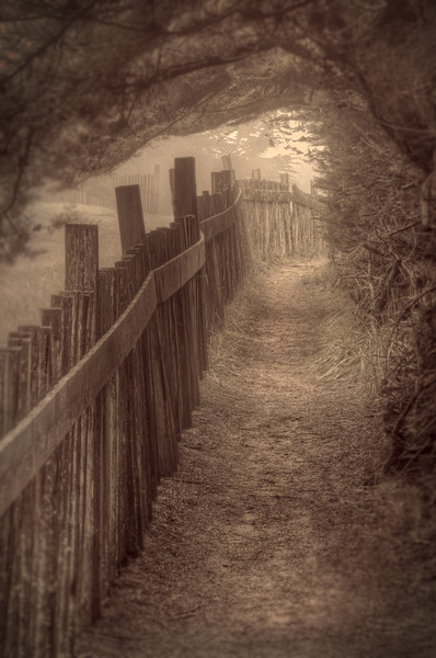 The Trail, Sea Ranch, California