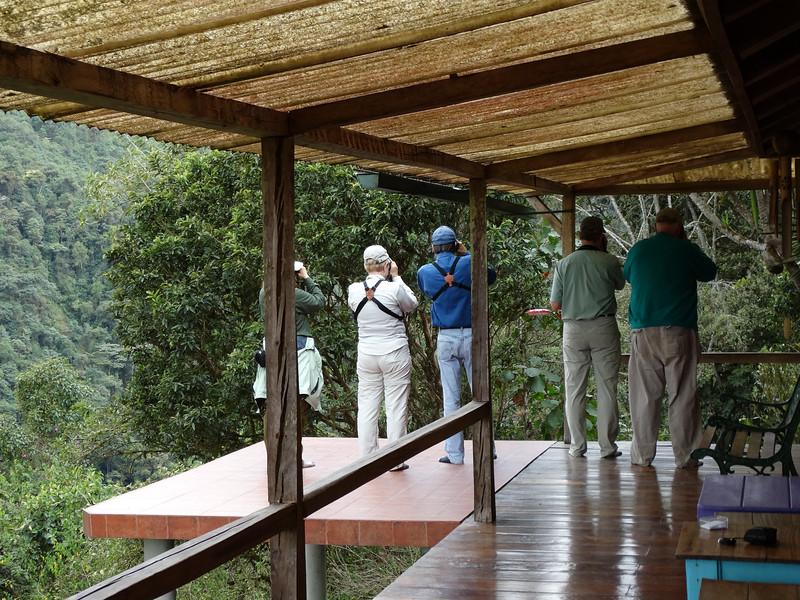 Watching hummers at Pacha Quindi (090814 436P-RAR)