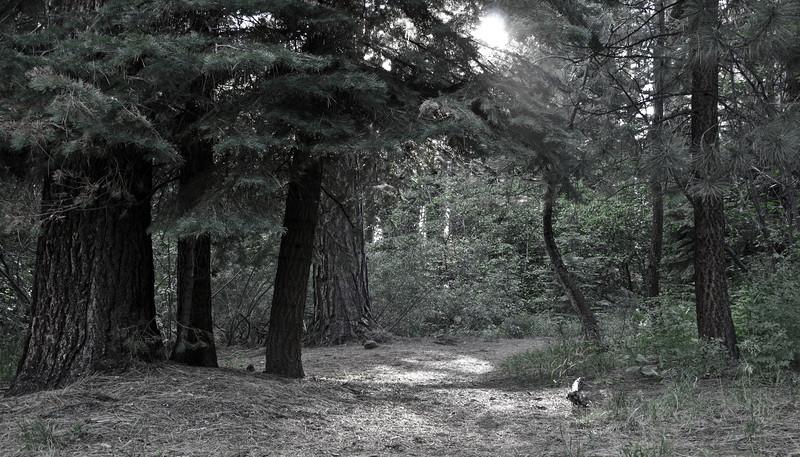 tahoe_488.jpg